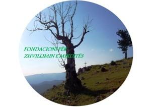 fondacioni logo