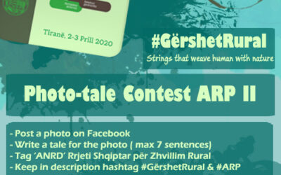 Photo-tale Contest ARP II – Strings that wave human with nature