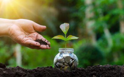 Shpallet shkrimi fitues në kuadër të Konkursit II të shkrimeve gazetareske për hulumtimin dhe promovimin e praktikave më të mira të bizneseve rurale të gjelbra